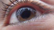 blur-brunette-close-up-256380 (1)